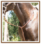 """Standing"" Martingale"